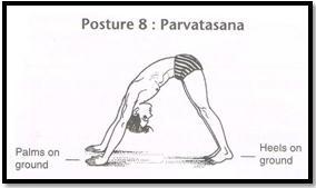 Surya Namaskar Pose 8 - Parvatasana
